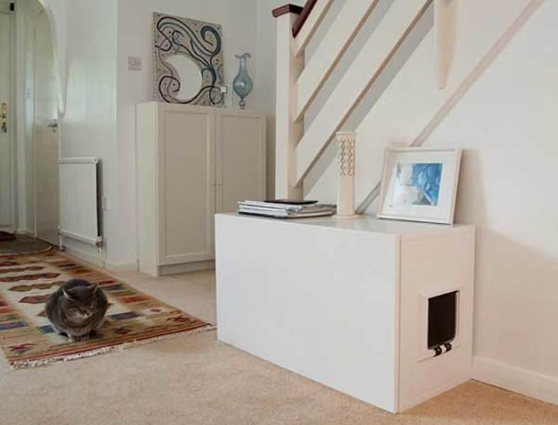 evlerde kedi odası dekorasyonu